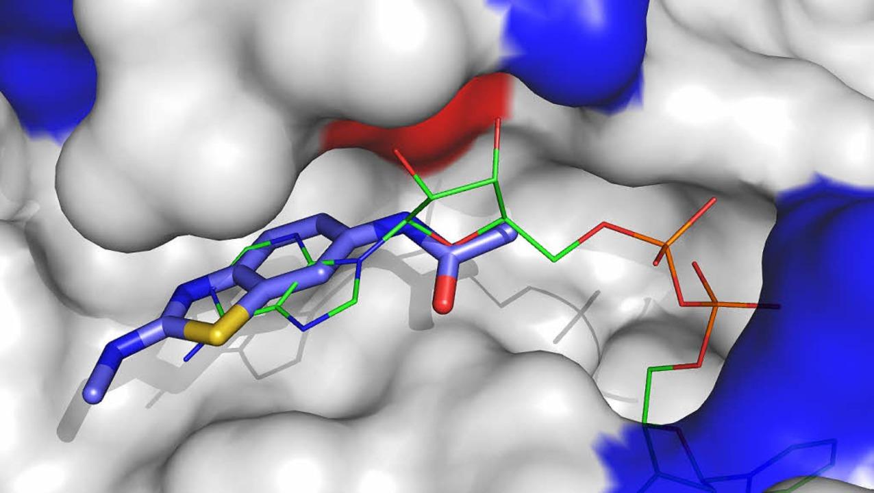Die Computersimulation zeigt Moleküle,...r Medikamente verwendet werden können.  | Foto: Privat