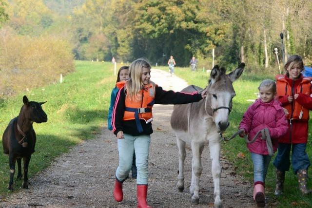 Auf Tour mit Esel und Ziege