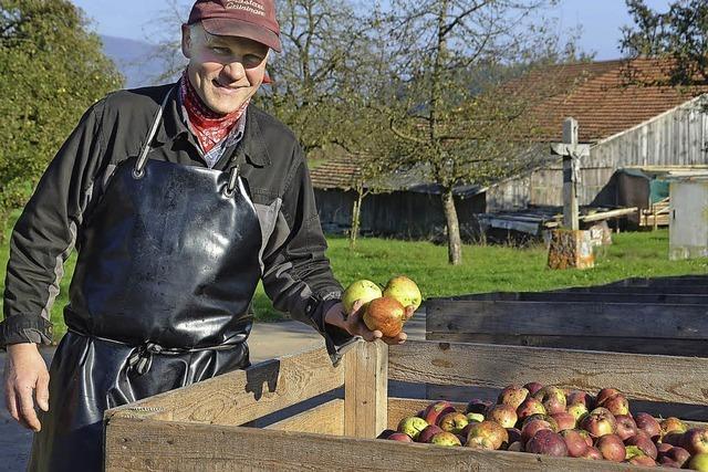 Menge der Äpfel lag unter Durchschnitt