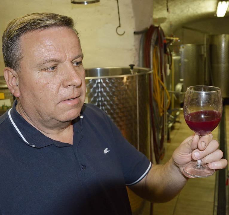 Der Vorsitzende der IG Weinbau Jürgen ...n Prüfung der Weine des Jahrgangs 2014  | Foto: Heinz u. Monika Vollmar