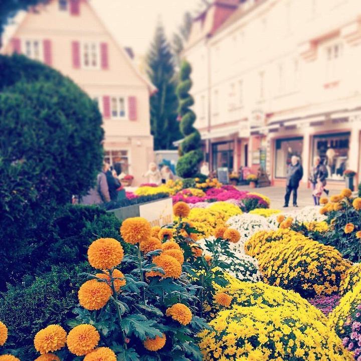 Der Schlossplatz in Lahr mit Instagram-Filter.  | Foto: Hannah Michel