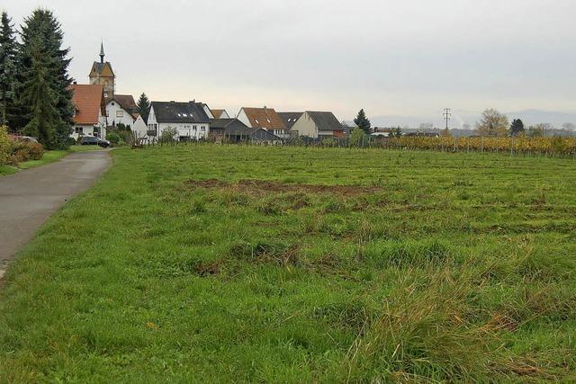 25 Bauplätze in Niederrotweil