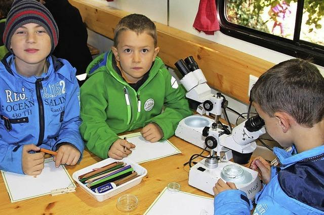 Naturschutz für Kinder im rollenden Labor