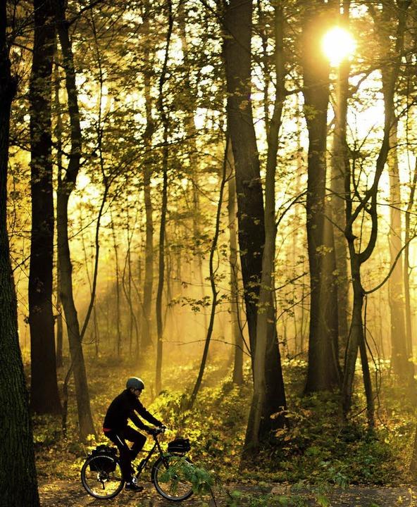 Raus aus der Einsamkeit   | Foto: dpa