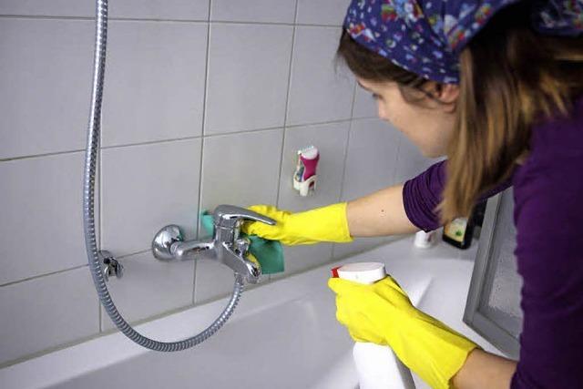 Welche Reinigungsmittel sind umweltfreundlich?