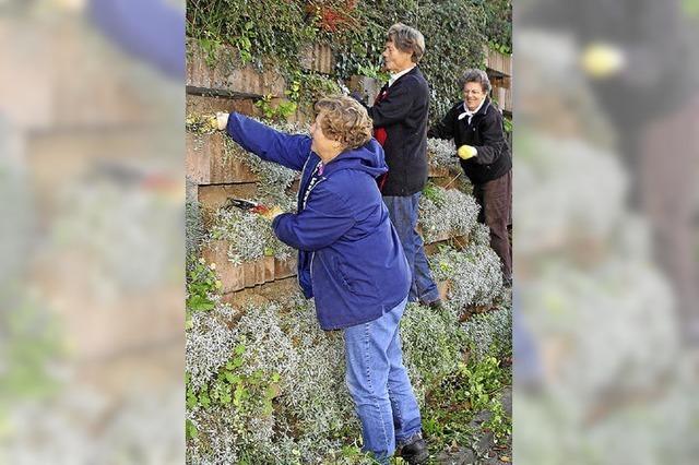 Landfrauen pflegen Mauer