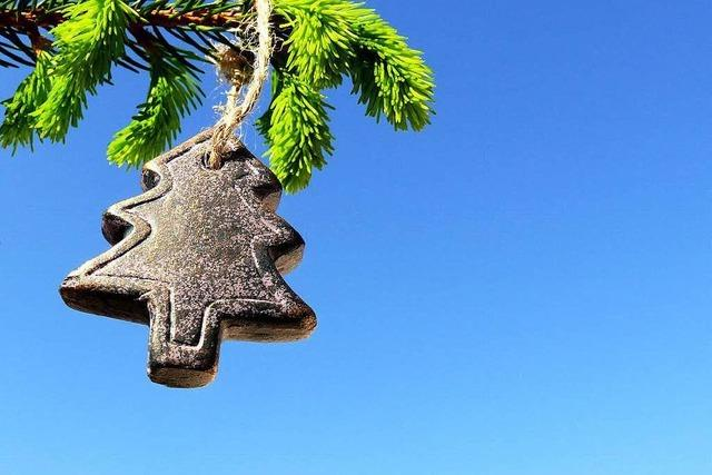 Landratsamt verbietet Weihnachtsbäume an Schulen