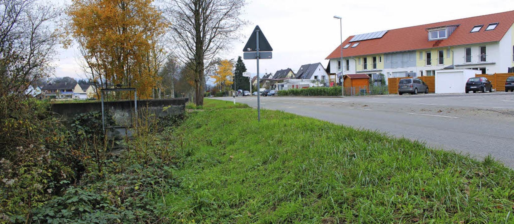 Ein neuralgischer Punkt bei Hochwasser...rkung für das Wohngebiet zu erreichen.  | Foto: mario schöneberg