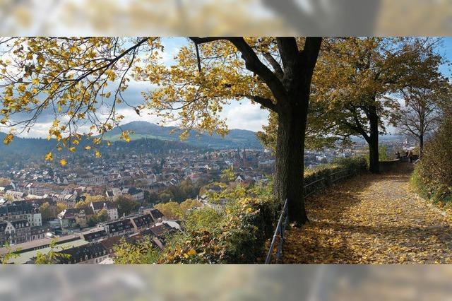 Der Freiburger Schlossberg im Herbst