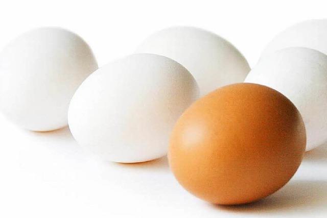 Viele Bio-Eier waren wohl gar nicht bio