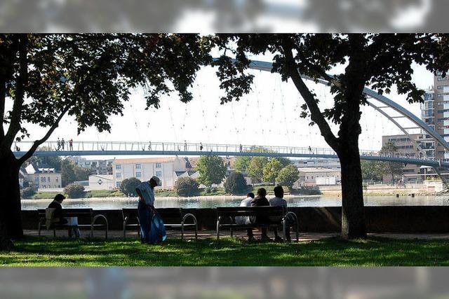 Friedlinger Bürger nehmen die Planung des Rheinparks in die Hand
