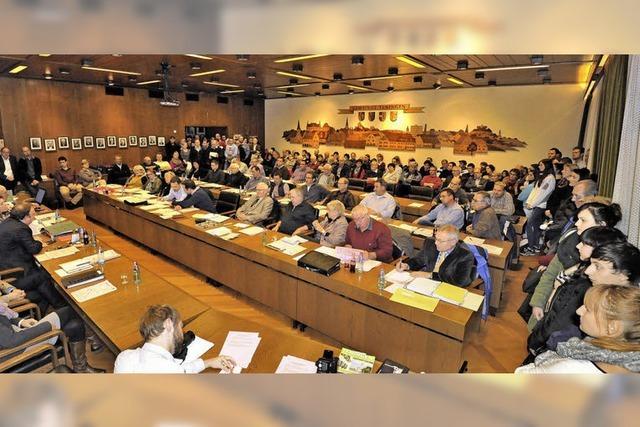 Gemeinderat will günstige Sanierung