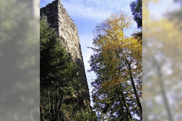 Burgen-Symposium in Frick/Schweiz