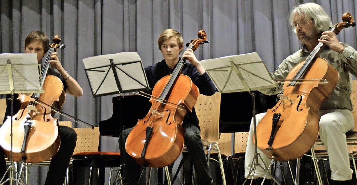 Das Cello-Trio, bestehend aus Robin Wo...mas Himmler begeisterte das Publikum.     Foto: Sarah Nöltner