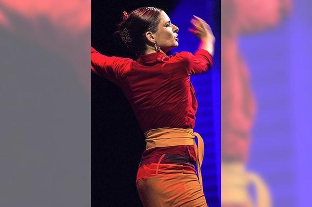 Dem Flamenco das Lächeln beigebracht