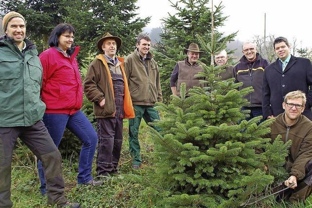 Werbung für lokale Bäume
