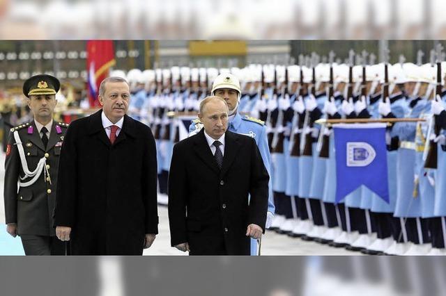 Putin und Erdogan haben viele gemeinsame Interessen