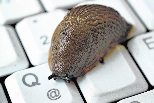 Internet im Schneckentempo bald Vergangenheit?
