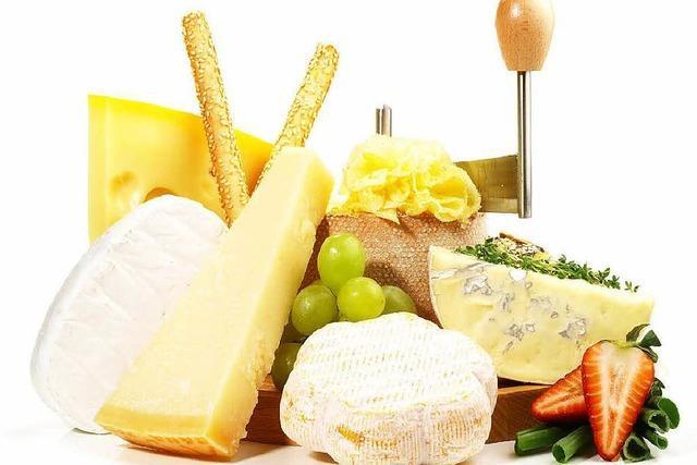 Camembert wegen Salmonellen zurückgerufen