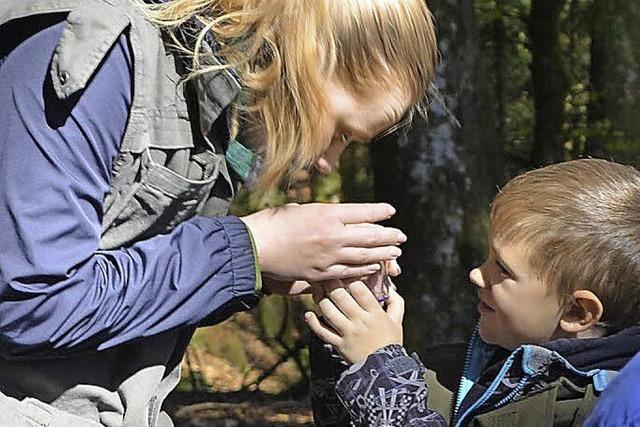 Naturparkschule für Sekundarstufe