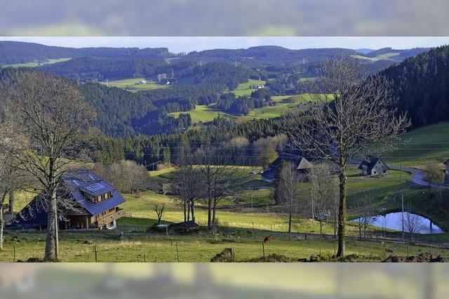 Alpersbach statt Balearen