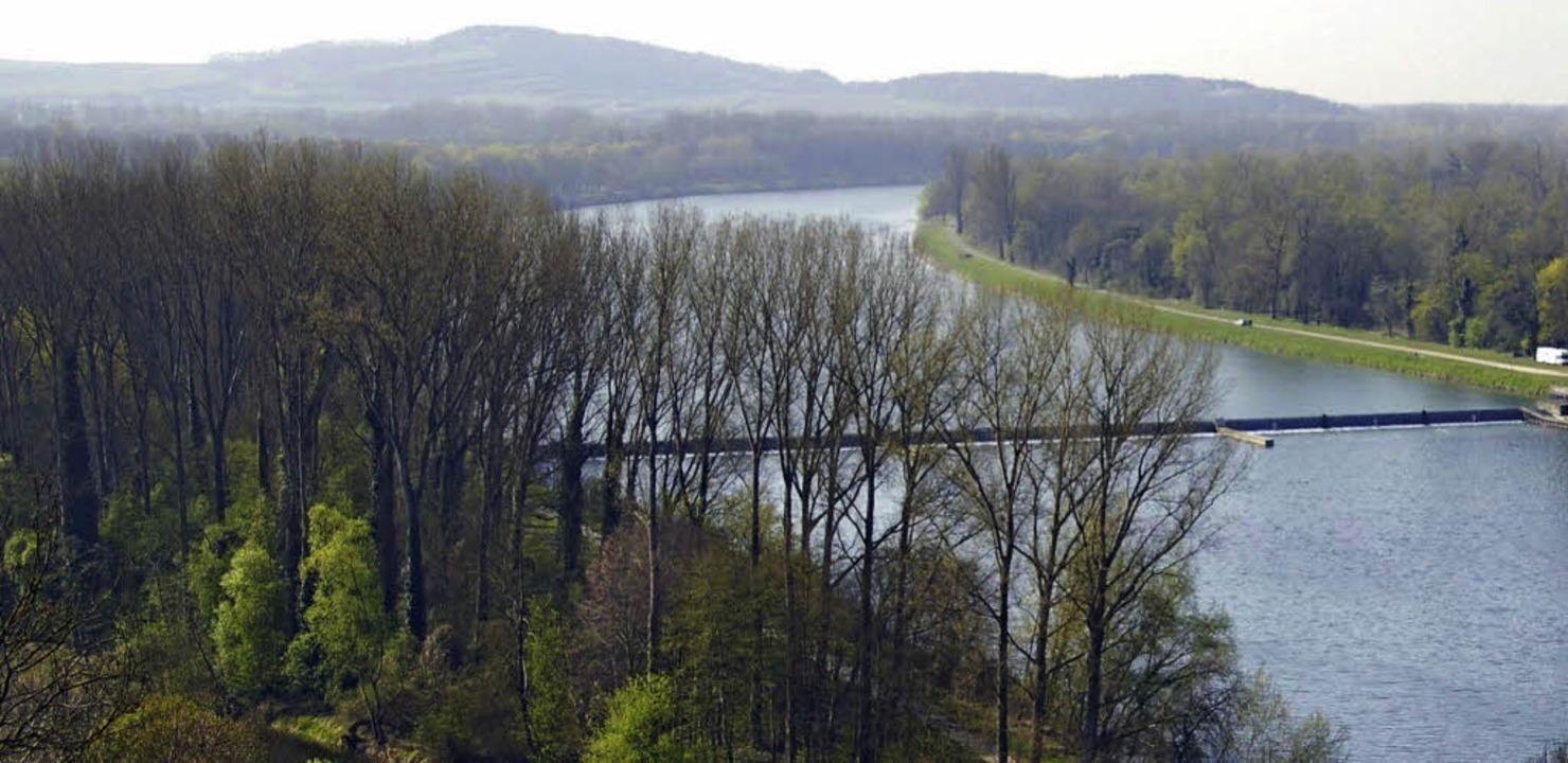 Die französischen Nachbarn entlang des... Breisach-Burkheim eingestaut werden.   | Foto: Archiv:Hans-Jürgen Truöl