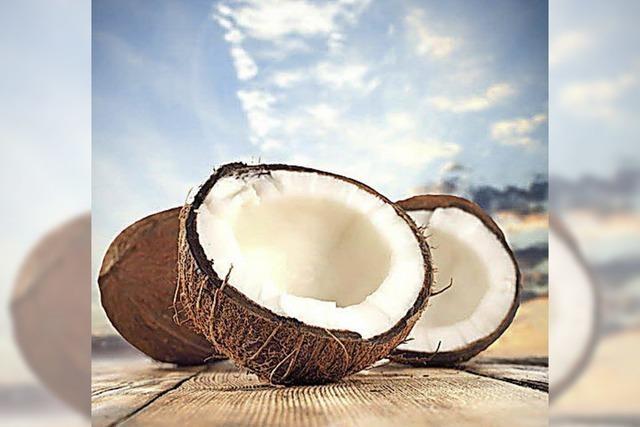 Murmeltier oder Kokosnuss?