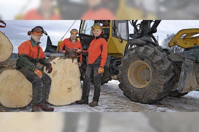 Holzhieb zum Schutz der benachbarten Häuser