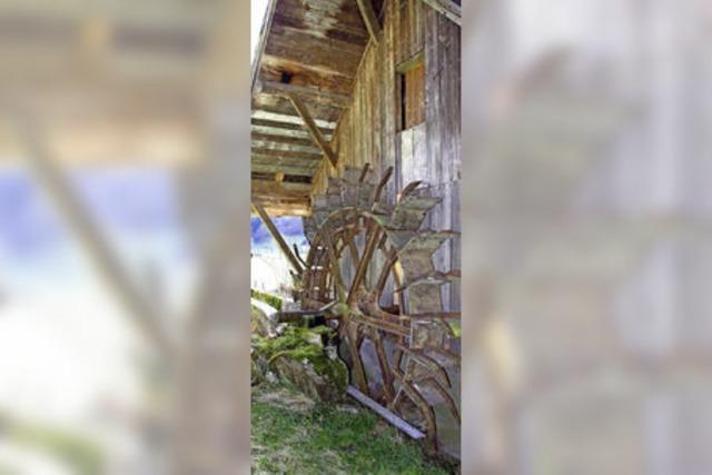 Heimatverein Hansmeyerhof will die Vogtshofmühle restaurieren - aber es geht nicht voran