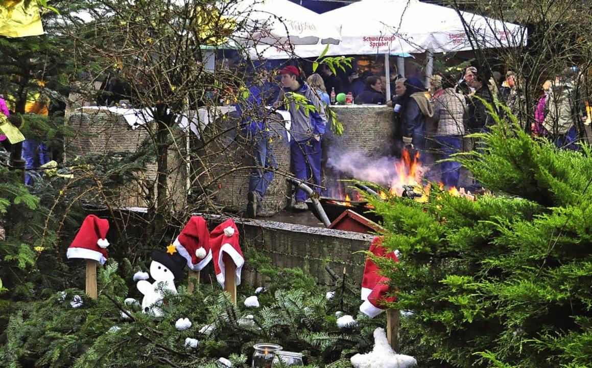 Der weihnachtlich geschmückte Fohlenho...wieder zahlreiche Besucher angezogen.   | Foto: Dieter Fleig