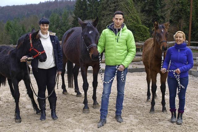 Für das Wohlergehen der Pferde