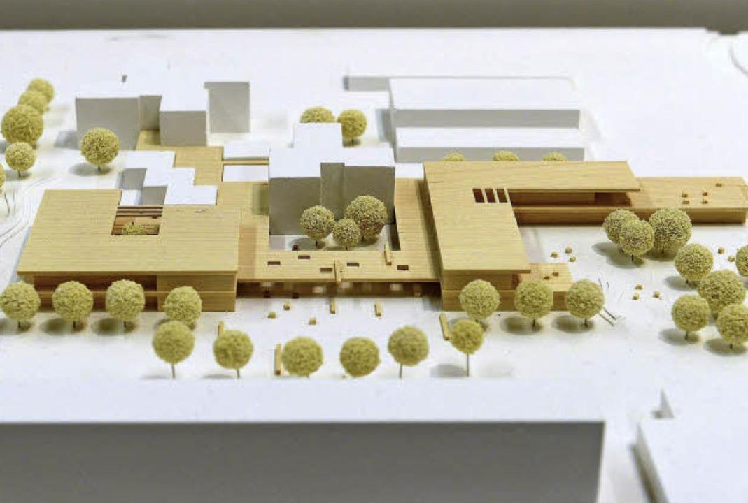 Nach diesem Modell soll die Adolf-Reic...Schule in Weingarten erweitert werden.  | Foto: Ingo Schneider