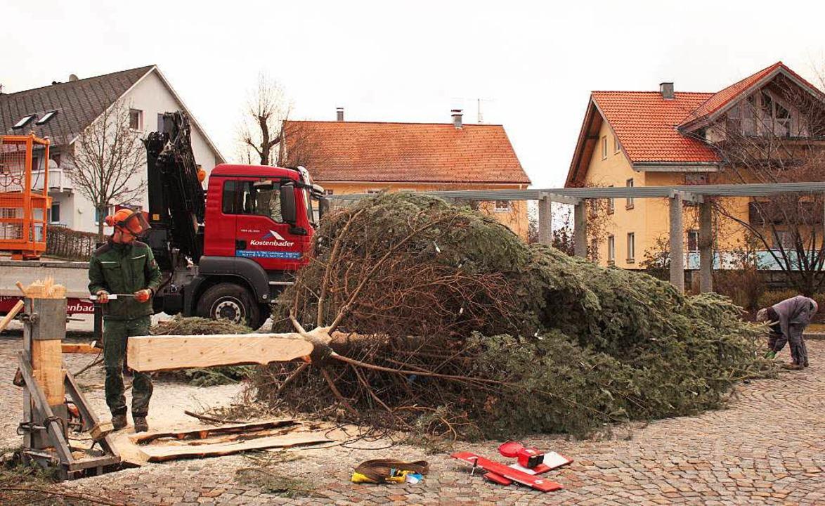 Der umgestürzte  Christbaum in Grafenhausen wurde wieder aufgestellt.     Foto: Dorothée Kuhlmann