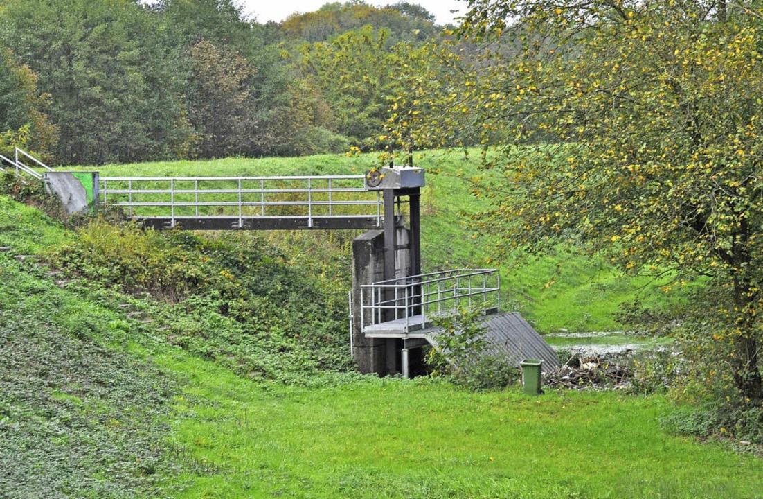 Der Damm des Rückhaltebeckens Dietenba...ses der Rheintalbahn umgebaut werden.   | Foto: julius steckmeister
