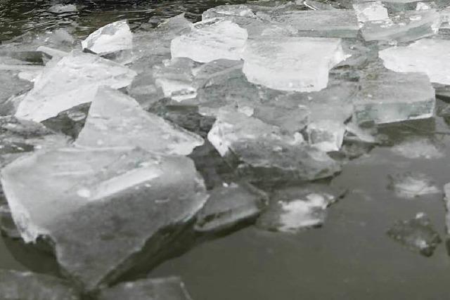 So rettete ein Passant ein Kind vom dünnen Eis des Stehlesees