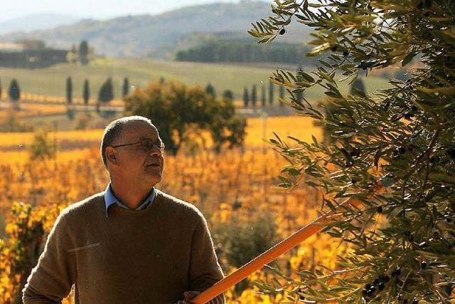 Italien geht das Olivenöl aus