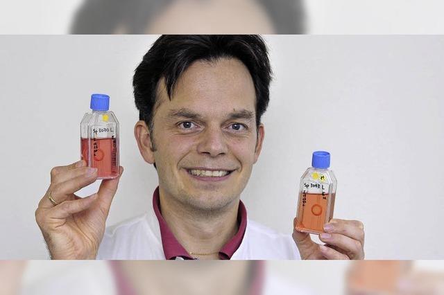 An der Uniklinik Freiburg werden jährlich 300 Hornhaut-Transplantationen vorgenommen
