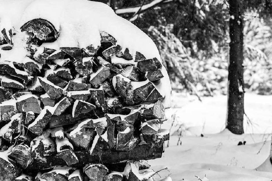 Frischer Schnee im Hochschwarzwald (Foto: Carlotta Huber)