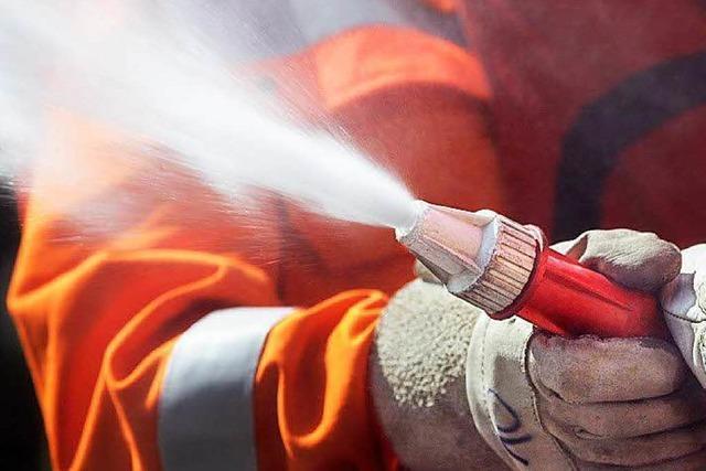 Feuerteufel verursachen 10 000 Euro Schaden