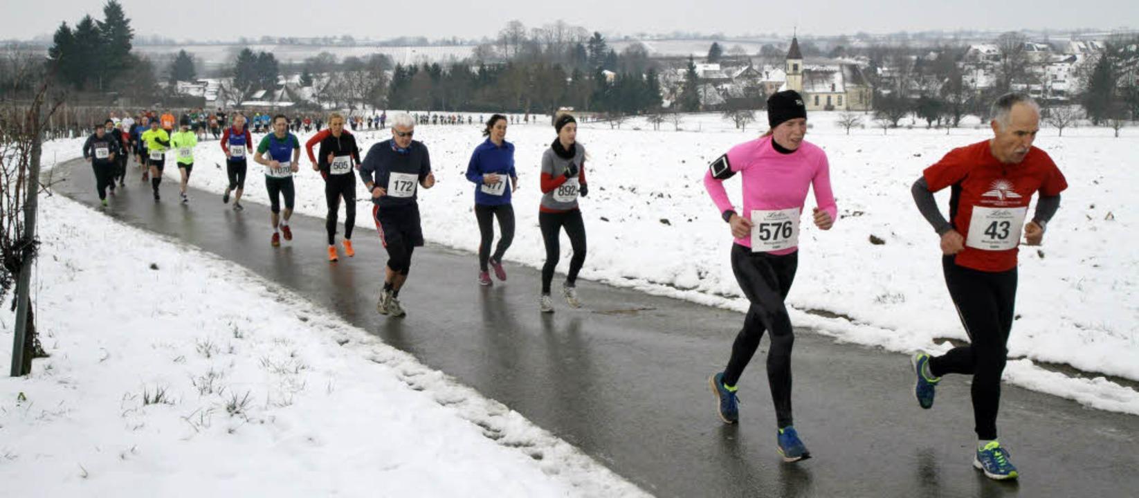 Die Läuferschlange windet sich beim Si...urch das verschneite Markgräflerland.   | Foto: Winfried Stinn