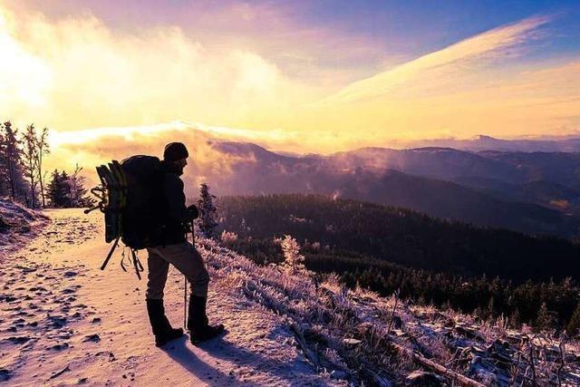 Winterwandern auf dem Westweg: Reizvolles Farbenspiel