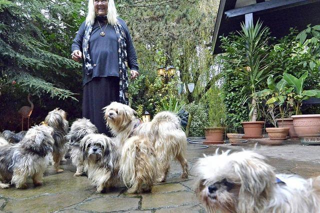 So erforscht Ulrike Halsband das Verhalten von Hunden