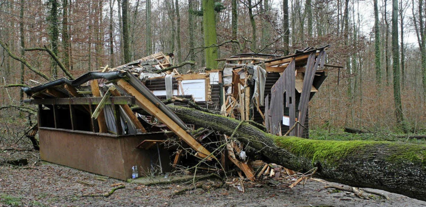 Die durch eine umgestützte Eiche zerst...gdhütte und was davon noch übrig blieb  | Foto: ReinhaRD CrEMER