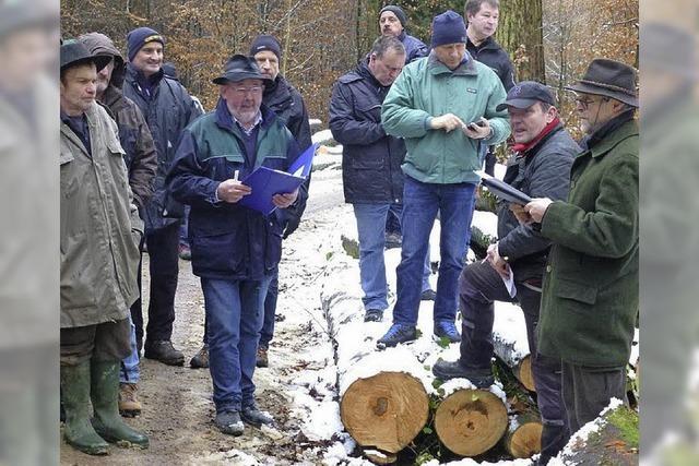 Holzversteigerung bringt über 16 000 Euro Erlös