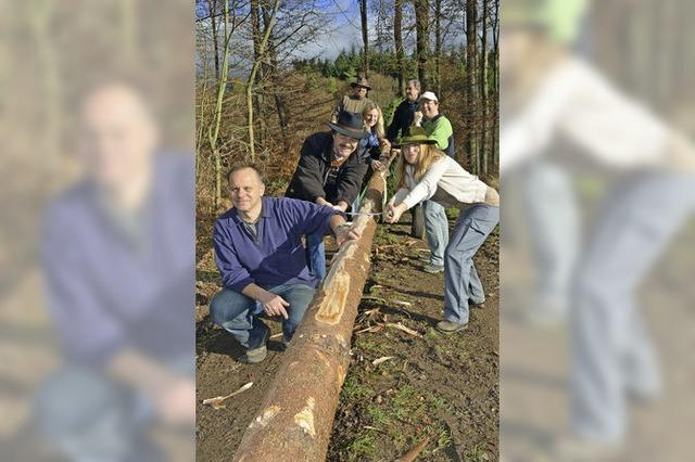 Laura II muss den Baum schälen