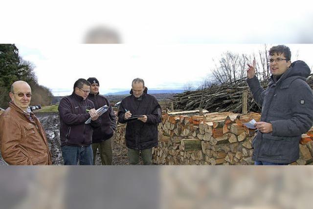 Holzauktion in Merdingen