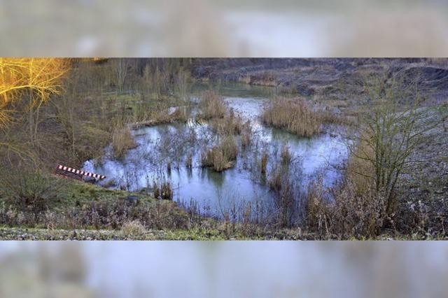 Zwei Aussichtsplattformen kommen - das Biotop Tongrube wird für Naturfreunde erschlossen