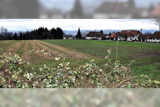 Weg für Baugebiet Maisenhardt ist frei