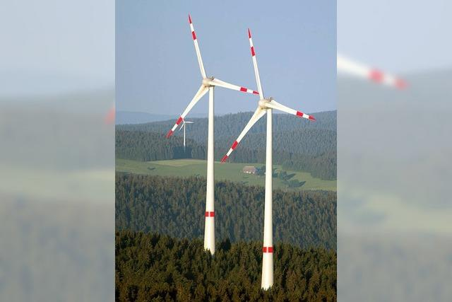 Genossenschaft kritisiert den Entwurf des Teilregionalplans Windkraft