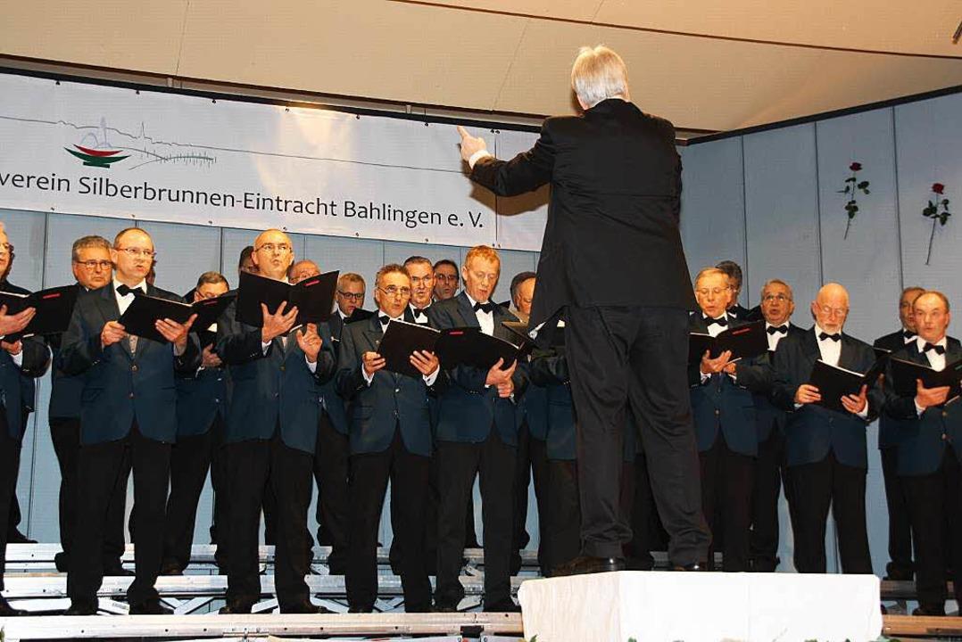 Der MGV Silberbrunnen-Eintracht unter der Leitung von Heiko Mazurek.  | Foto: Christiane Franz